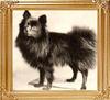 21031y_Ch._Black_Boy_-_born_1890.jpg