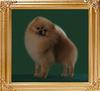 Bogy_of_Mei_Tse_Ai_Chuan_Cheng_Jung_Wu_2yrs_2mo.jpg
